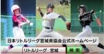 『リトルリーグ宮城利府リーグ・利府ユニオン 選手募集中』